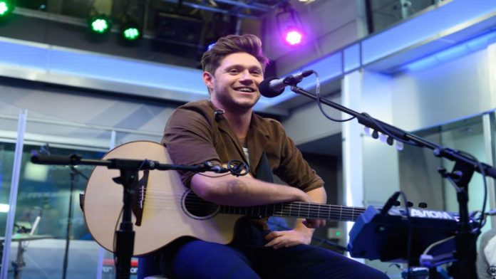 Niall Horan, cantante irlandese - Fonte: Getty Images