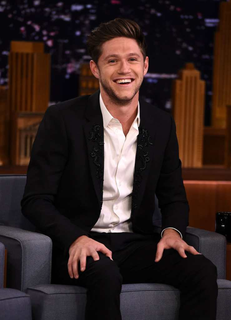 Niall Horan, cantante - Fonte: Getty Images