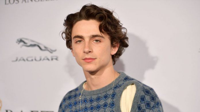 Il famoso attore Timothee Chalamet