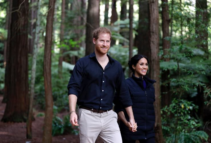 Harry e Meghan, Fonte: Getty Images
