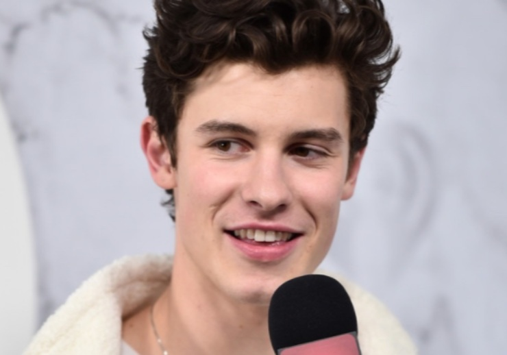 Shawn Mendes One Direction